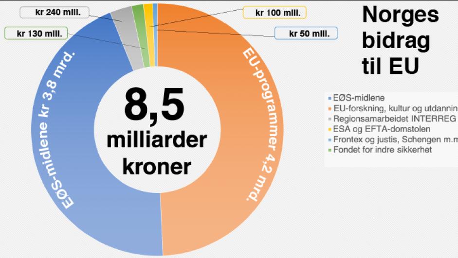 Deltakelse i EØS koster Norge dyrt i mer enn en forstand.