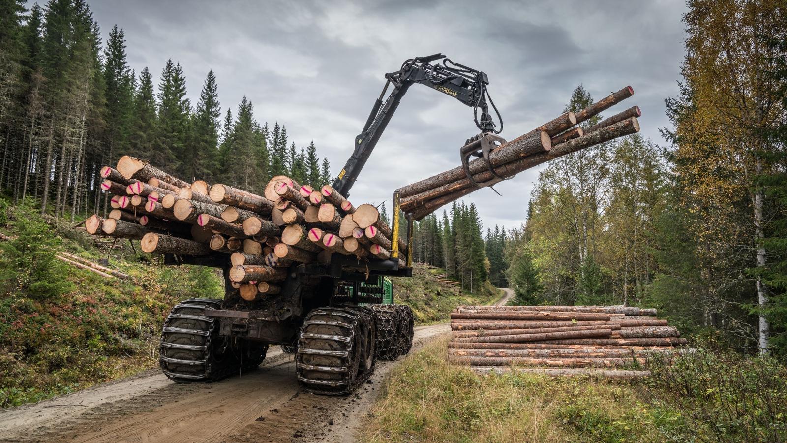 Skogsbilveg og lastbærer som lunner tømmer i Vesterå, Bangdalen.